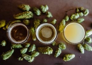 ビールとホップ